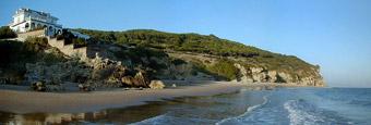 Parque natural Acantilado y pinar de Barbate, Costa de la Luz