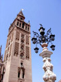 The Giralda tower, Sevilla - Seville, Spain.