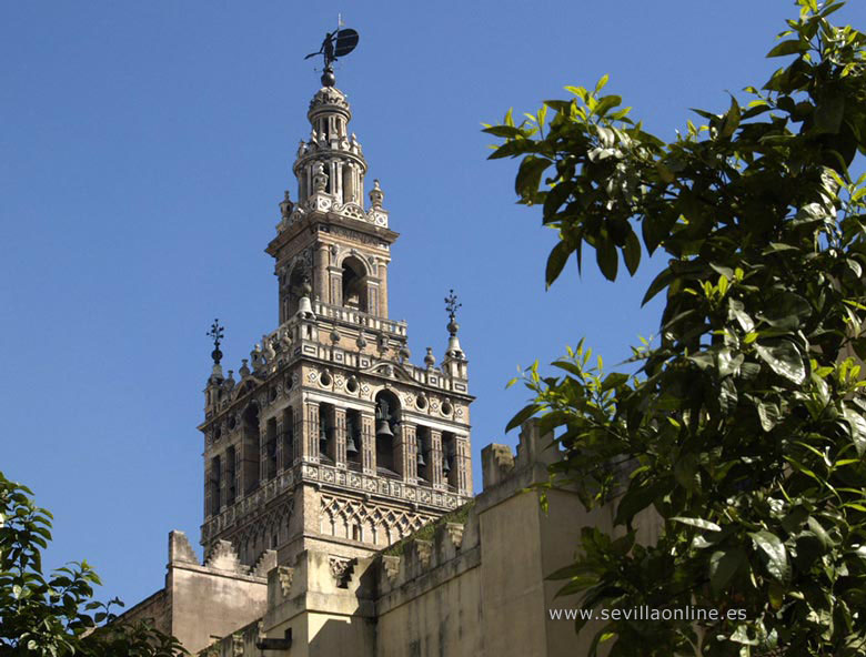 The Giralda tower in Seville - Andalusia, Spain.